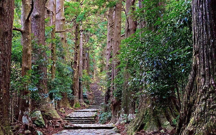 The atmospheric entrance to the Kumano Kodo pathway. We hiked the ancient Kumano trails in between playing golf in Wakayama, Japan.