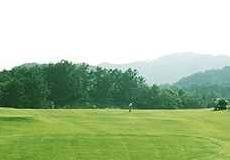 ローズ ゴルフ クラブ