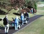 Japanese golf caddies